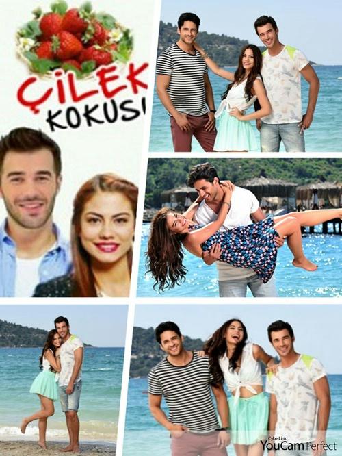 Serial Turcesc Cilek Kokusu Subtitrat Www Despreseriale Ro